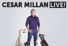 Cesar-Milan-220x150.jpg