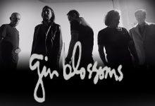 GinBlossoms_bpac_220x150.jpg