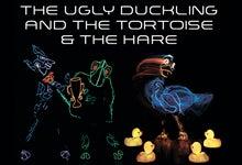 Ugly Duckling_bergenpac_220x150.jpg